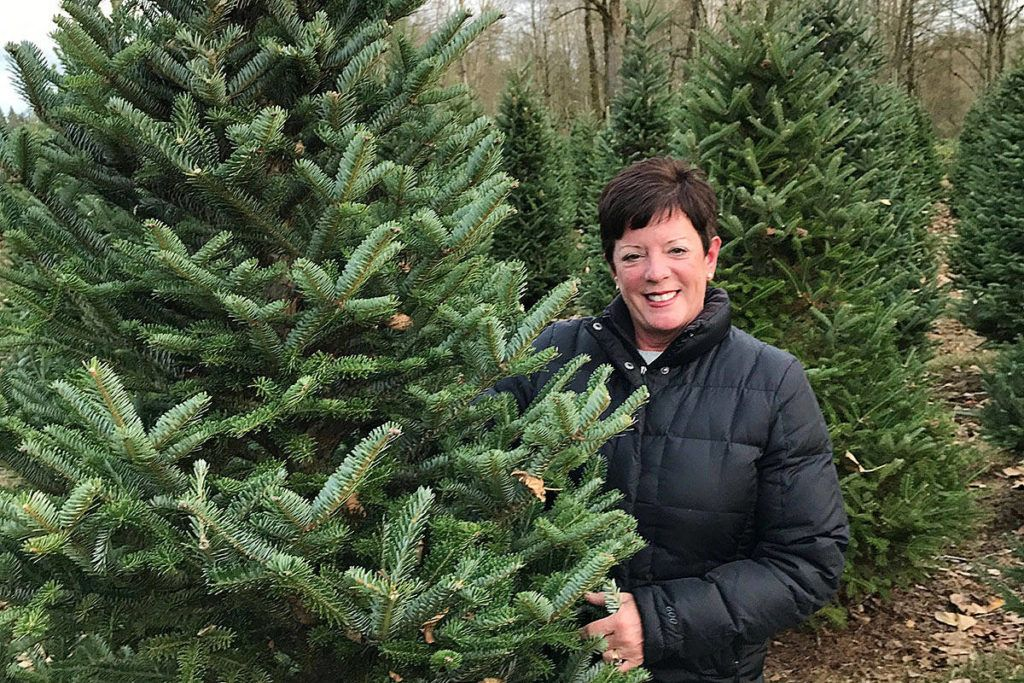 Langley grower: Christmas magic starts with choosing just the right ...