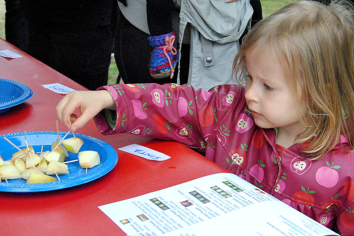 Take a bite out of Heritage Apple Day