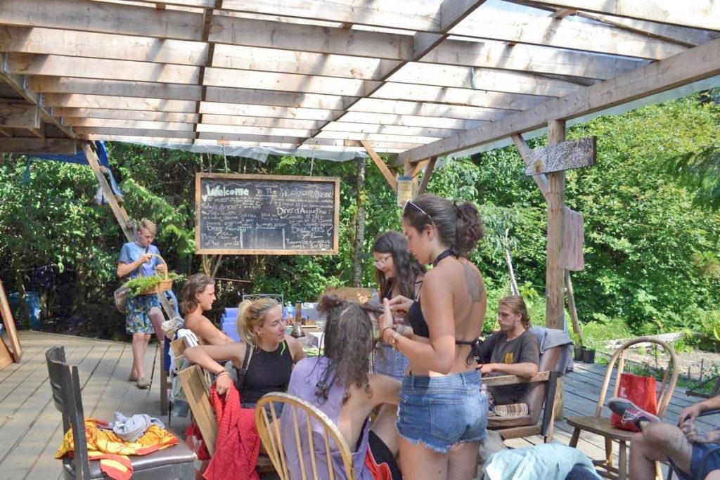 Poole's Land finale: Tofino's legendary 'hippie commune' being dismantled - Aldergrove Star