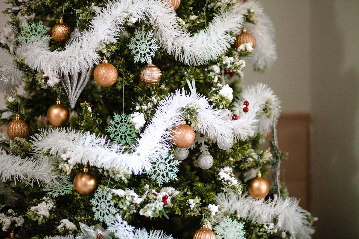Vote For Best Christmas Tree To Benefit Langley Memorial